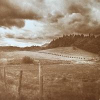 Albumen-Wales