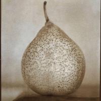 Albumen-Wide-pear