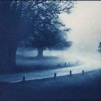 Cyanotype-In-the-mist