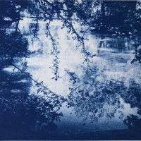 Cyanotype-Little-easton