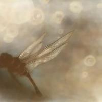 Gumprint-Neverthless-24