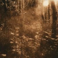 Lith-print-Blackford-Hill-Sunrise