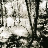 Lith-print-Loch-Faskally