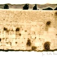 Gold process 25 Weeping Wall