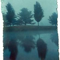 Polaroid emulsion lift monolake