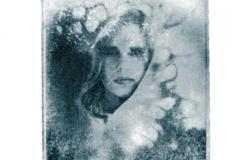 Polaroid emulsion lift chris l