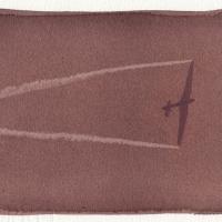 Anthotype Free-Flight