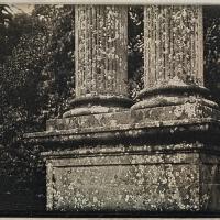 Daguerrotype The-Twin-Columns