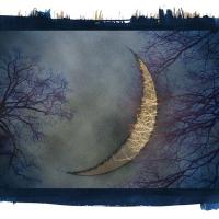 Kallitype Bad-Moon-Rising