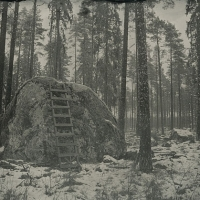 Wetplate collodion The Rock and the Ladder