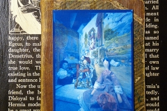 Pinhole Cyanotype My Book House