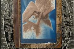 Pinhole Cyanotype Van Dyke Brown Botany