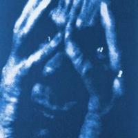 Cyanotype Portret 15