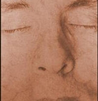 Kallitype Vandyke brown Bromoil Portret 2