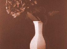Kallitype Vandyke brown Stil 2
