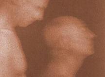 Kallitype Vandyke brown Triptych 1