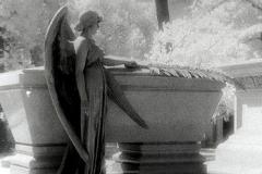 Polaroid transfer Angel architecture