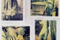 Polaroid transfer Bellfontainehands