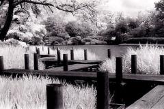 Polaroid transfer Seven bridges