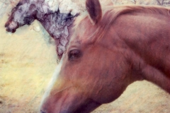 Polaroid SX-70 Horses
