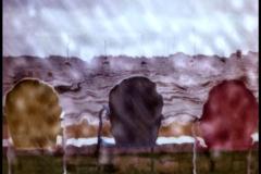 Polaroid SX-70 Rain delay