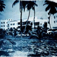 Cyanotype Miami beach