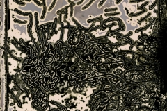 Chemigram Desert Skecth Capitol Reef 6
