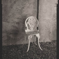 Platinum print Chair