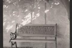 Platinum print Bench