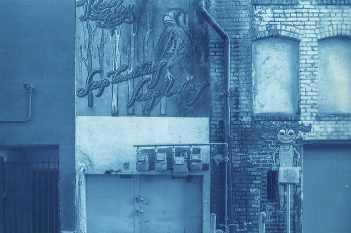 Cyanotype_The_Kicker