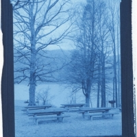 Cyanotype Watauga Point 1