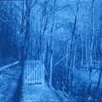 Cyanotype new Path gate