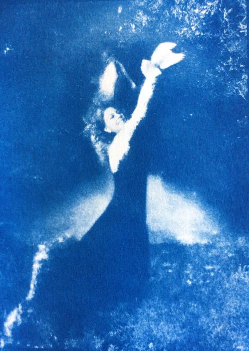 Cyanotype-Paradise