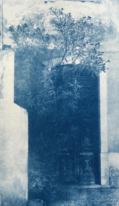 Cyanotype-Tomar-Door