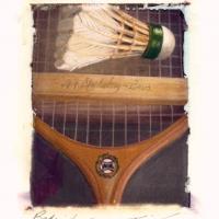 Polaroid image transfer Badminton II