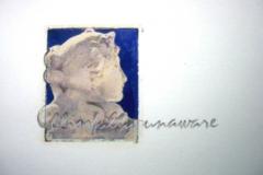 Polaroid image transfer Blissfully unaware
