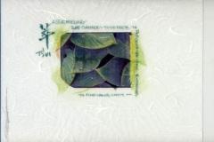Polaroid image transfer Tsui assembling