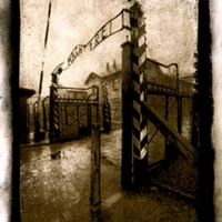 Gumoil Arbeit macht Auschwitz