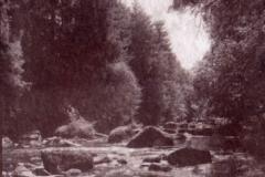 Salt print Leguer River 3
