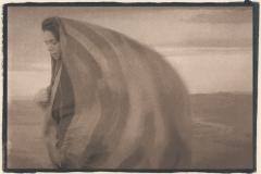 Tea Toned Cyanotype Ceaseless Winds