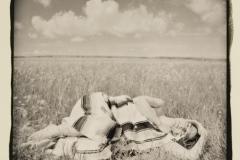 Ziatype Sleeping Among Prairie Flowers