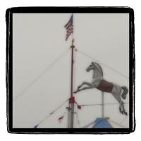 Gum bichromate Flying Horse