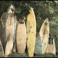 Gum bichromate Old Boards