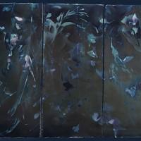 1-Vandyke-Cyanotype-Havana-Storm
