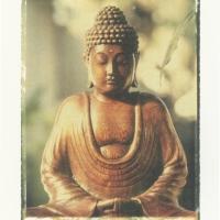 Fuji transfer Buddha