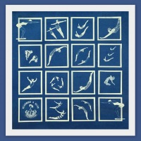 Into-the-Blue-Cyanotype-Photogram