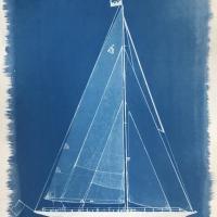Shamrock-V-Cyanotype-Blue-Print