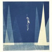 Take-the-Leap-Cyanotype-Photogram