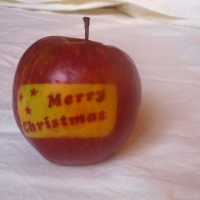 Photosynthesis Merry Xmas Apple