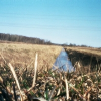 Pinhole Ditch